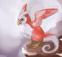 150+ project: delibird by edface
