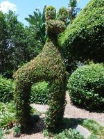 The Llama Hedge Dil Always Wanted by TheExtremeGoose