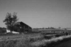 Old Barn and Pasture by pubculture