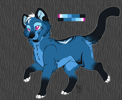 Feline Adoptable: ADOPTED! by SierratheSharkDoge