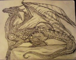 Dragon Sketch by inspectork1412