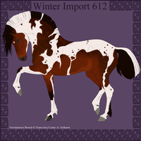 Winter Import 612 by ThatDenver