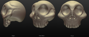 3D Toon Skull by SEspider