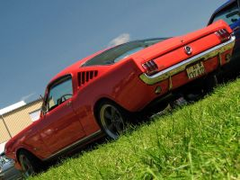 .orange fastback by AmericanMuscle