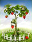 Strawberry tree by ~Zuboff