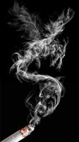 Smokin' Dragons by AnthonyHearsey