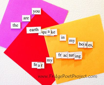 The Daily Magnet #352 by FridgePoetProject