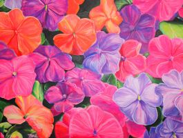 Impatiens by Marybriannemckay