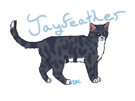 Jayfeather by courtneyrc