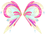 Coloras Samix Wings by Coloralecante