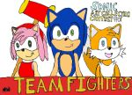 Sonic Art Collection Contest Entry by HinataFox790