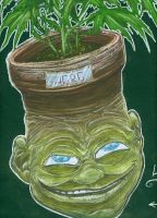 herb the pothead by nickybeats