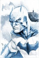 Batman by RansomGetty