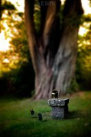 THE BAD STONE BENCH by LEQUARK