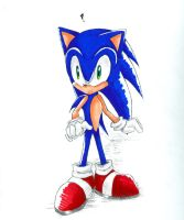 A Sonic picture by rhi-mix