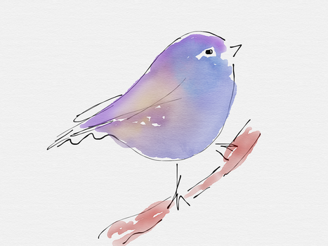 Ink and Watercolour wash of a bird by isntlifedaft