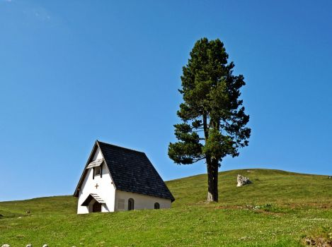 The tree and the chapel by Sergiba
