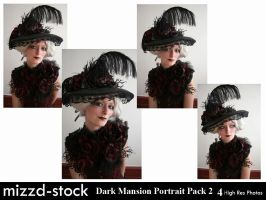 Dark Mansion Portrait Pack 2 by mizzd-stock