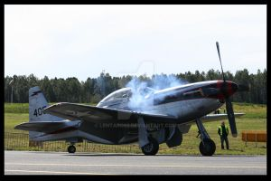 P-51 Mustang Engine by Lentaro92