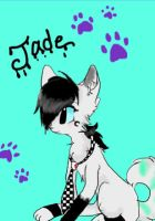 Jade the Wolf by toxicfoxes