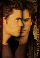 TVD, Stefan et Damon Salvatore by Slytan
