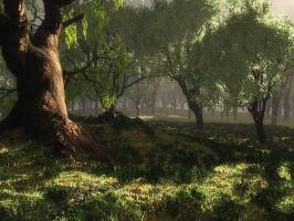 Forest_Test 04 by Andrescamilo1985