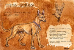 Dream Stalker Reference Sheet by Nanook94