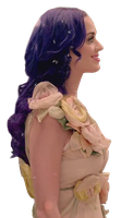 Katy Perry ''Wide Awake'' PNG by danperrybluepink
