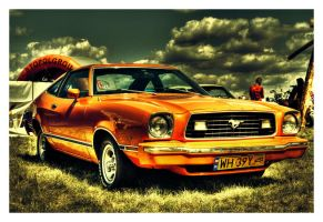 Second Mustang by Riffo