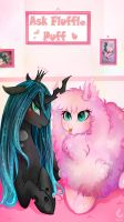 Ask Fluffle Puff by Wilvarin-Liadon