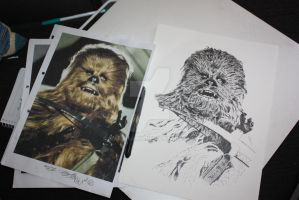 Chewbacca WIP3 by Bluelisamh