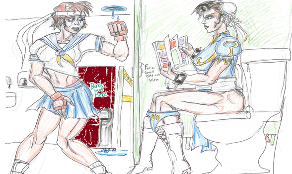 Street Fighter Bathroom Commission by theaven