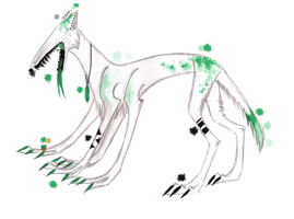 Paradox ADOPTABLE - CLOSED by Indissolubiles