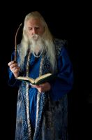 2014-08-01 Wizard Blue 08 by skydancer-stock