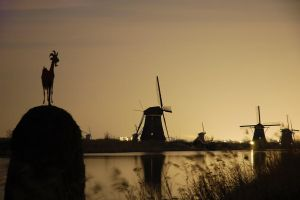 photos from holland 1 by knight0748