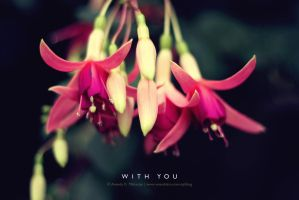 ... WITH YOU ... by lalitkala