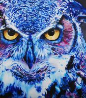 Blue Owl by jirael