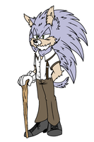 80 Year Old Sonic by SplashieBro