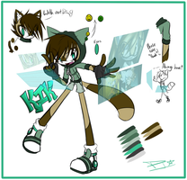 .:Kik Maister the raccoon:. by DJ-StaaR