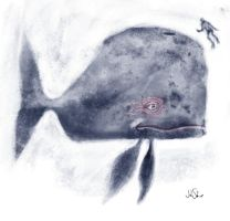 Whale by johnshine