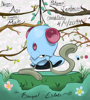 PKMNation - Aoi by PinkuFootsie