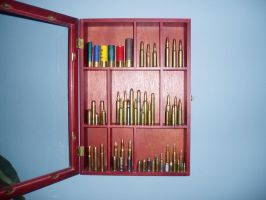 Bullet Curio by FNPhil