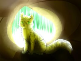 cat in cave by jenny96ist