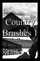 Country Brushes by Beautifulworld-stock