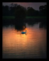 On Golden Pond by TehWeaver
