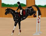 GHS Damone - show jumping entry by Golden-Horse-Stables