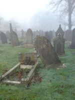 Foggy at the cemetery 13 by rudeturk
