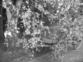 Leaves and wagon by MonikaDubska