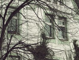On the Windows by DexYaz
