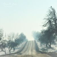 Talk in Grey - This dream by DianaES